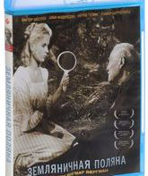 Blu-ray Земляничная поляна / Smultronstället (Wild Strawberries)