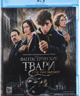 Blu-ray Фантастические твари и где они обитают / Fantastic Beasts and Where to Find Them