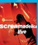 Blu-ray Primal Scream: концерт Screamadelica в Лондоне / Primal Scream: Screamadelica, Live (2010)